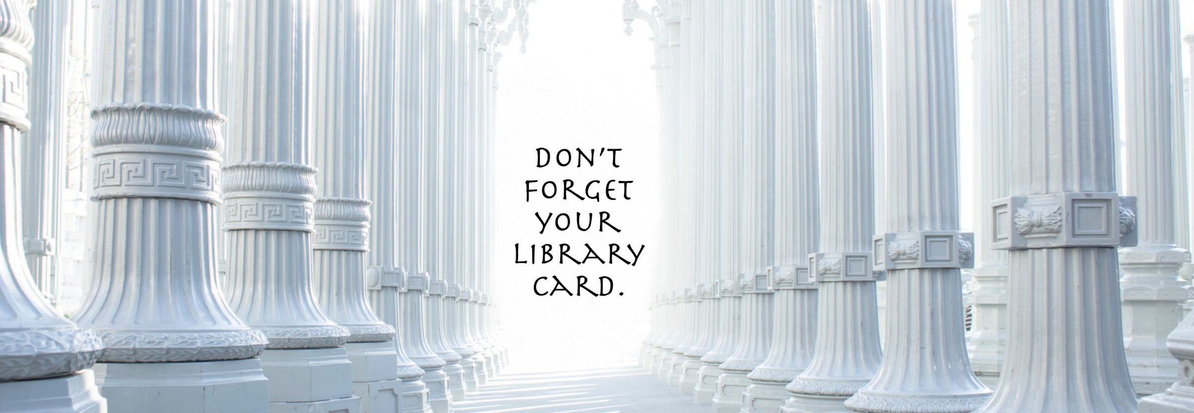 8th Dimensional Library now open