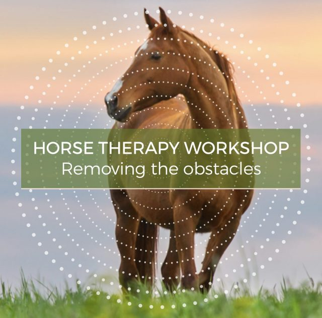 Horse Therapy Workshop - Conversations with Spirit